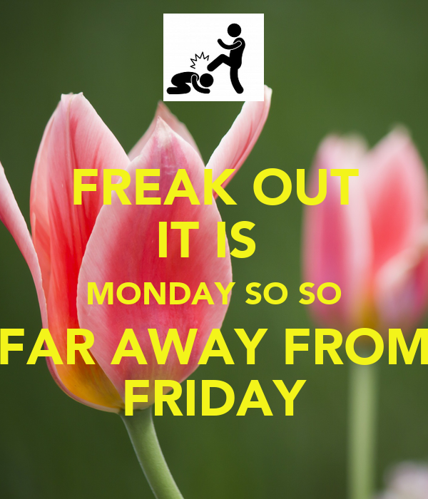 FREAK OUT IT IS  MONDAY SO SO FAR AWAY FROM FRIDAY