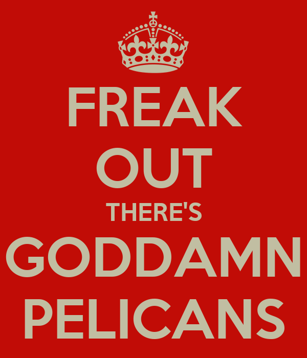FREAK OUT THERE'S GODDAMN PELICANS