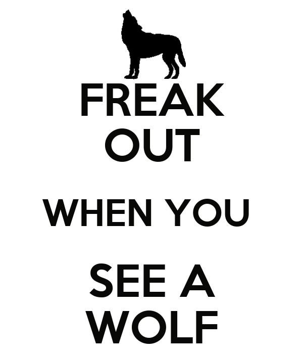 FREAK OUT WHEN YOU  SEE A WOLF