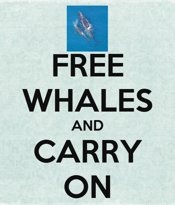 FREE WHALES AND CARRY ON