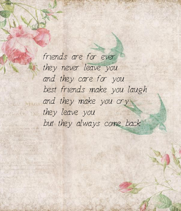 Friends Are For Ever They Never Leave You And They Care For You Best Friends Make You Laugh And They Make You Cry They Leave You But They Always Come Back Poster