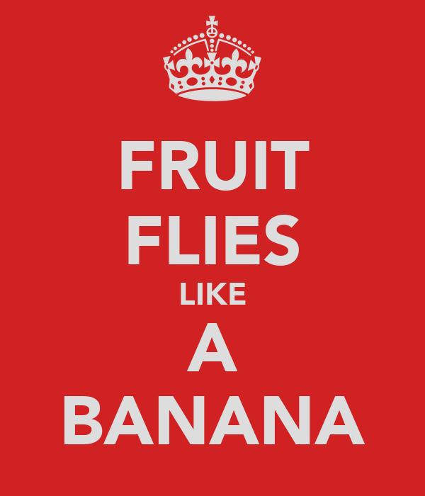 FRUIT FLIES LIKE A BANANA