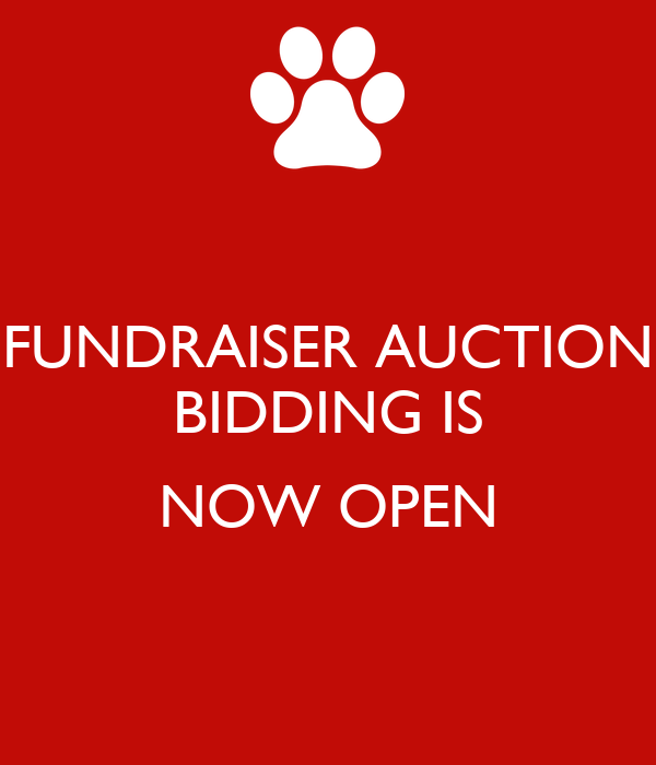 FUNDRAISER AUCTION BIDDING IS  NOW OPEN