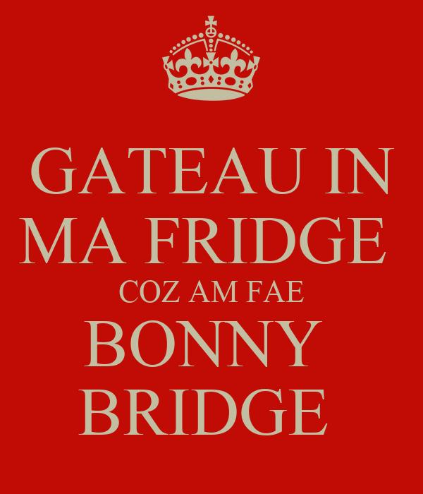 GATEAU IN MA FRIDGE  COZ AM FAE BONNY  BRIDGE