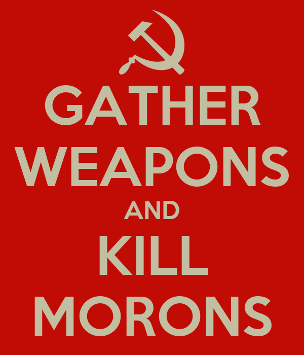 GATHER WEAPONS AND KILL MORONS