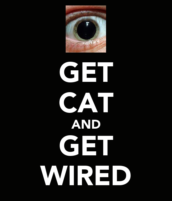 GET CAT AND GET WIRED