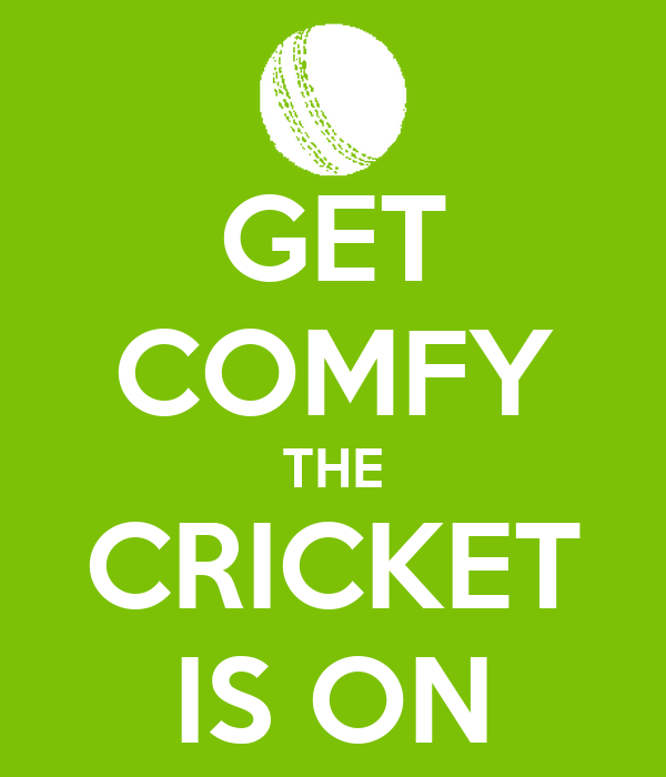 GET COMFY THE CRICKET IS ON