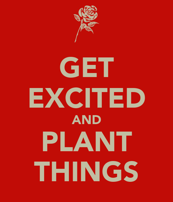 GET EXCITED AND PLANT THINGS