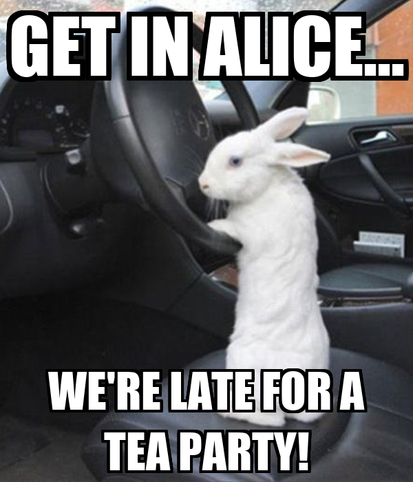 GET IN ALICE... WE'RE LATE FOR A TEA PARTY!