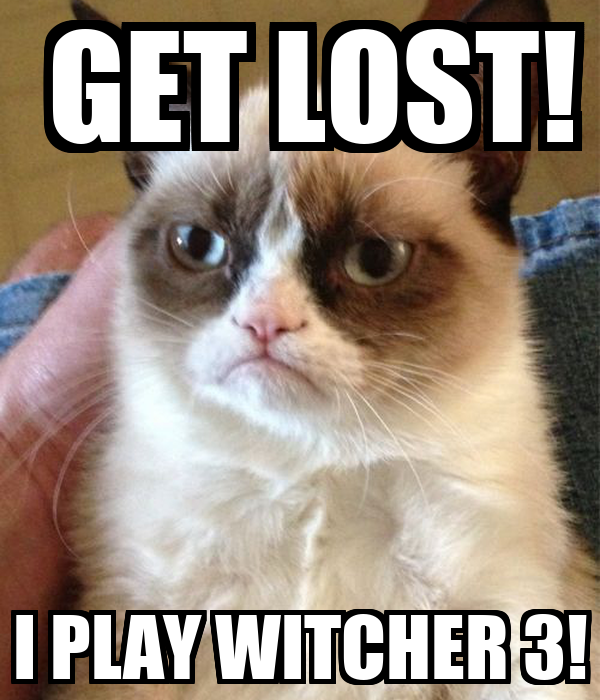 GET LOST! I PLAY WITCHER 3!