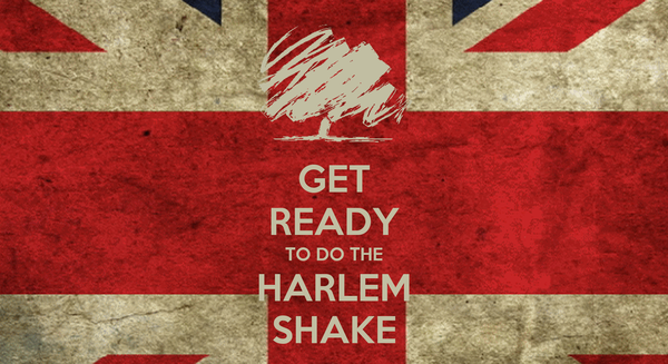 GET READY TO DO THE HARLEM SHAKE