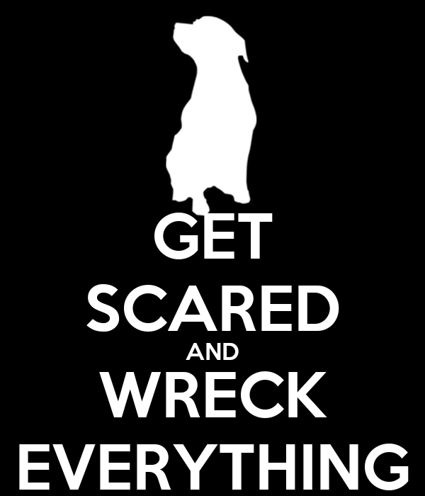 GET SCARED AND WRECK EVERYTHING