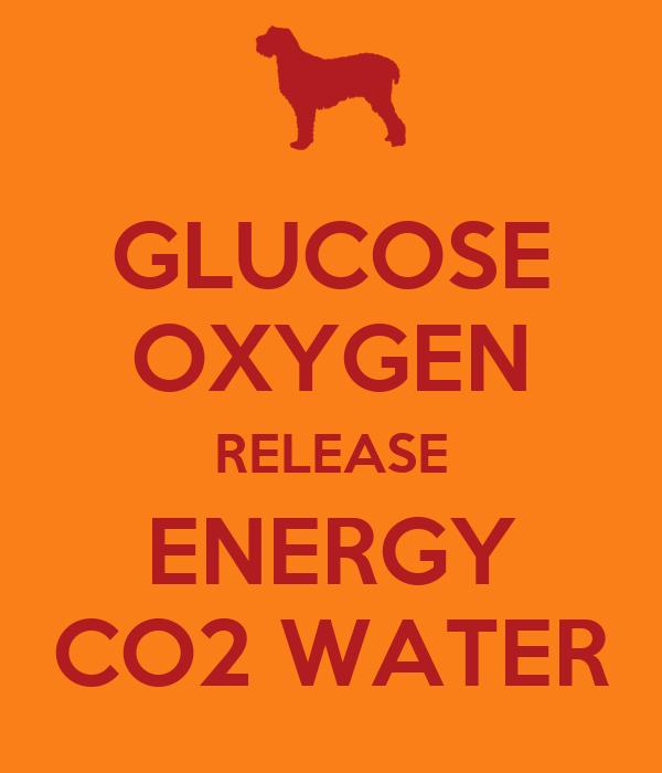 GLUCOSE OXYGEN RELEASE ENERGY CO2 WATER