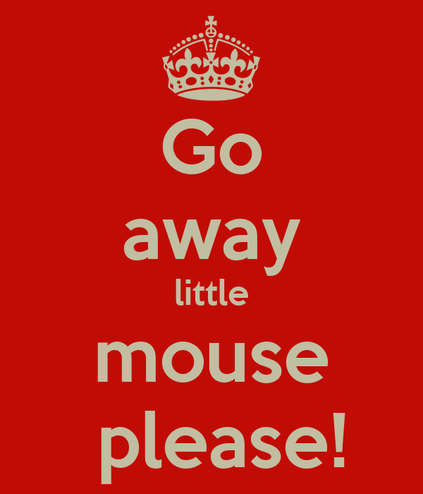 Go away little mouse  please!