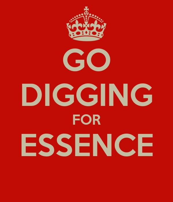 GO DIGGING FOR ESSENCE