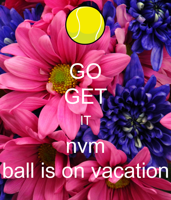 GO GET IT nvm ball is on vacation