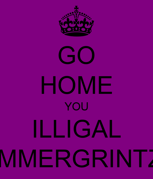 GO HOME YOU ILLIGAL IMMERGRINTZ