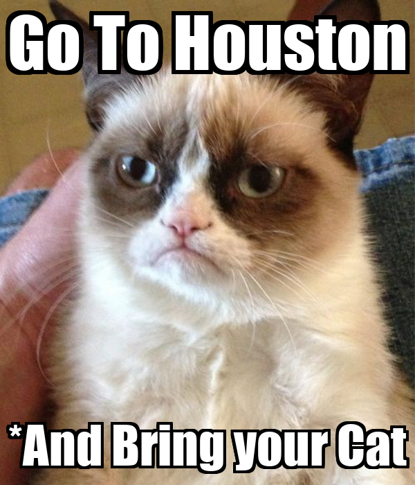 Go To Houston *And Bring your Cat