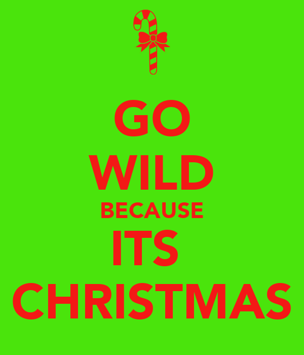 GO WILD BECAUSE ITS  CHRISTMAS
