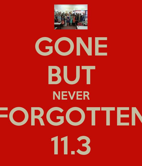 GONE BUT NEVER FORGOTTEN 11.3