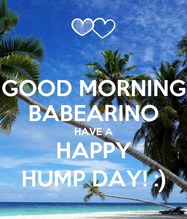 GOOD MORNING BABEARINO HAVE A HAPPY HUMP DAY! :)
