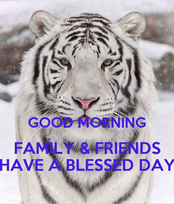 GOOD MORNING FAMILY & FRIENDS HAVE A BLESSED DAY