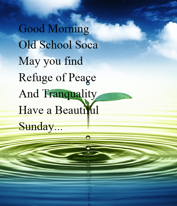 Good Morning Old School Soca May you find  Refuge of Peace And Tranquality Have a Beautiful  Sunday...