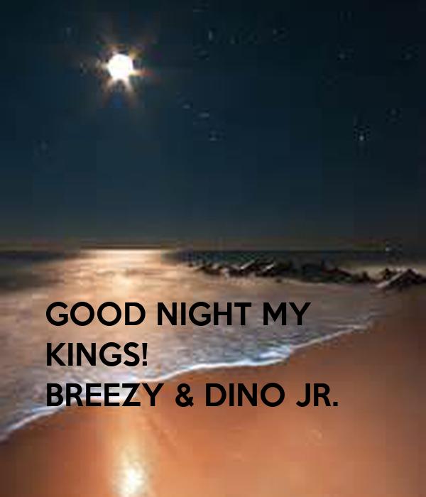 GOOD NIGHT MY KINGS!  BREEZY & DINO JR.