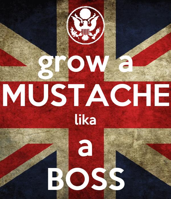 grow a MUSTACHE lika a BOSS