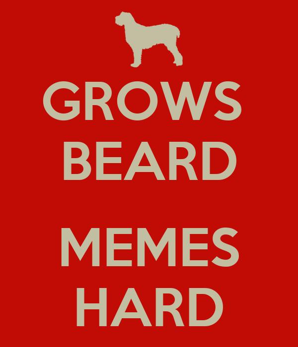 GROWS  BEARD  MEMES HARD
