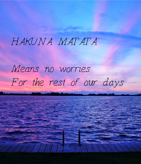 HAKUNA MATATA  Means no worries For the rest of our days