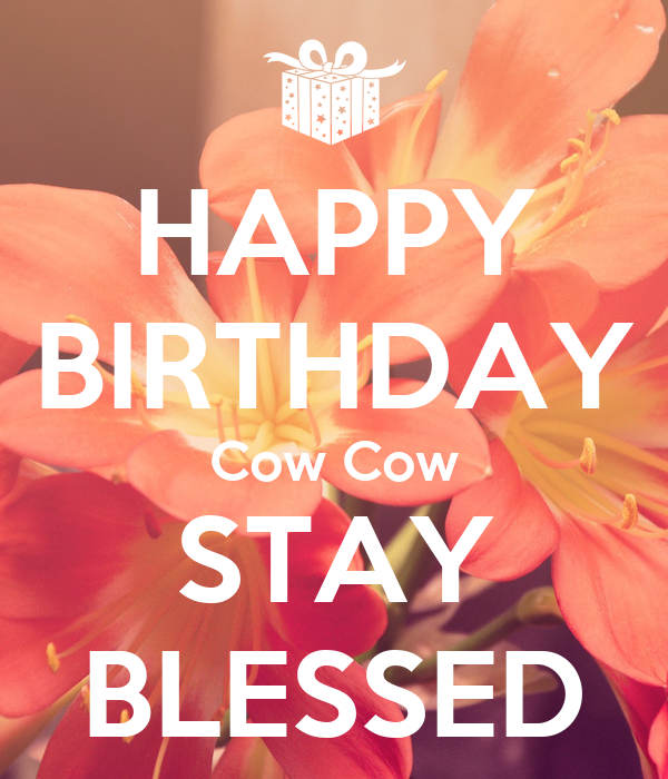 HAPPY BIRTHDAY Cow Cow STAY BLESSED