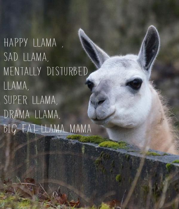 Happy Llama Sad Mentally Disturbed Super Drama