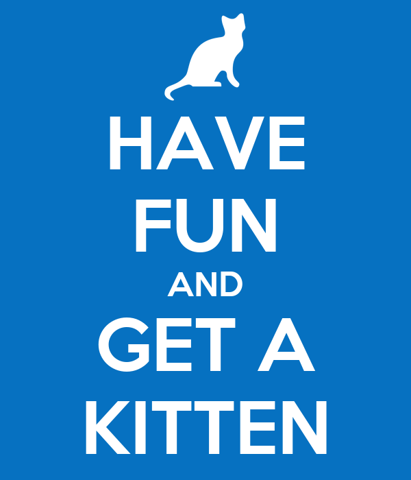HAVE FUN AND GET A KITTEN