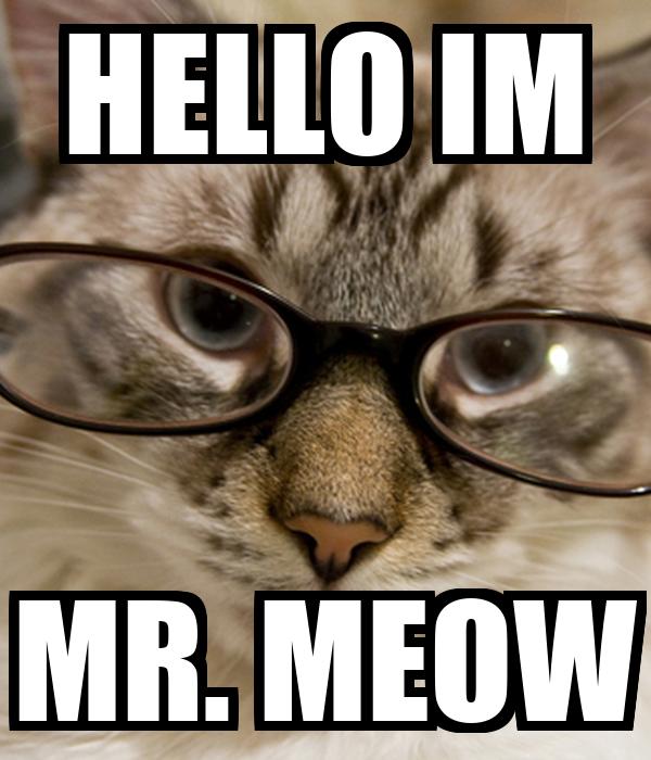HELLO IM MR. MEOW
