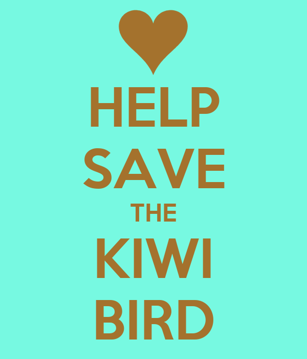 HELP SAVE THE KIWI BIRD