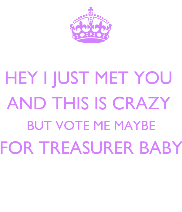 HEY I JUST MET YOU  AND THIS IS CRAZY  BUT VOTE ME MAYBE FOR TREASURER BABY