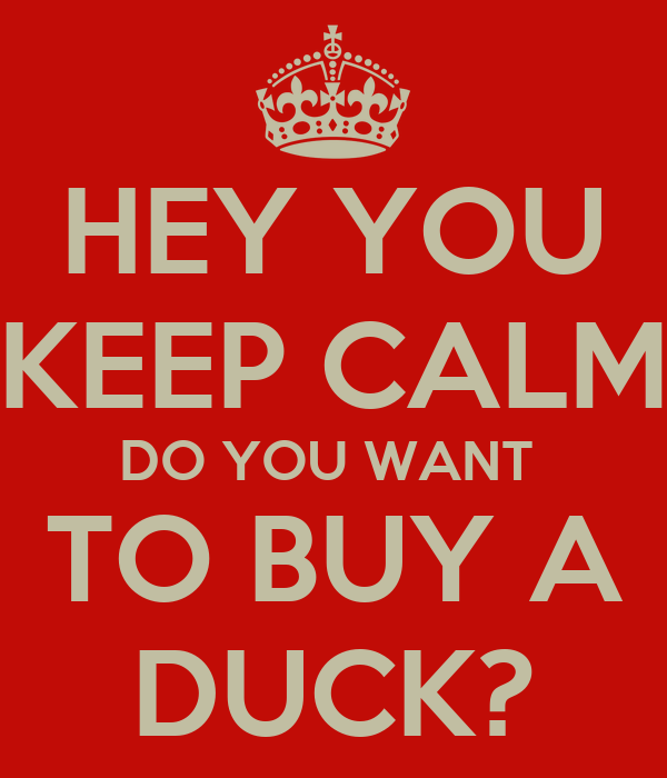 HEY YOU KEEP CALM DO YOU WANT  TO BUY A DUCK?