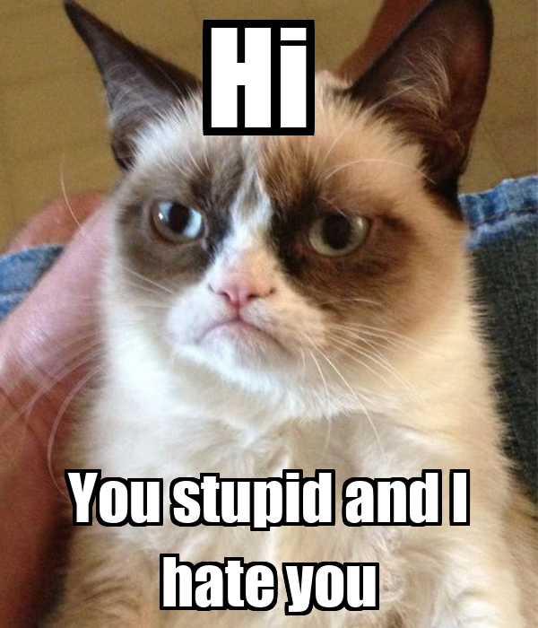 Hi  You stupid and I hate you