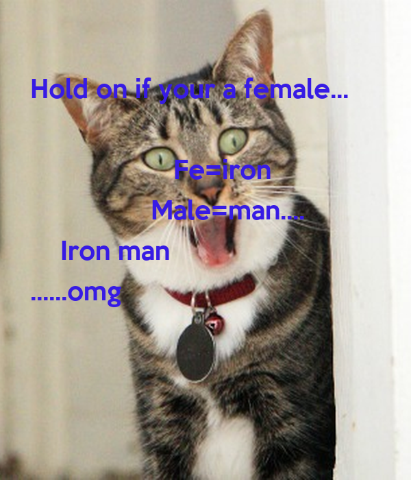 Hold on if your a female...