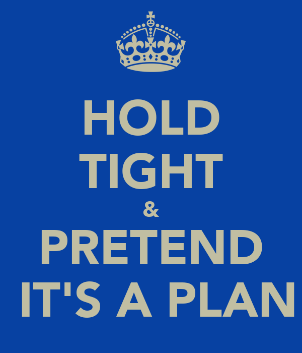 HOLD TIGHT & PRETEND  IT'S A PLAN