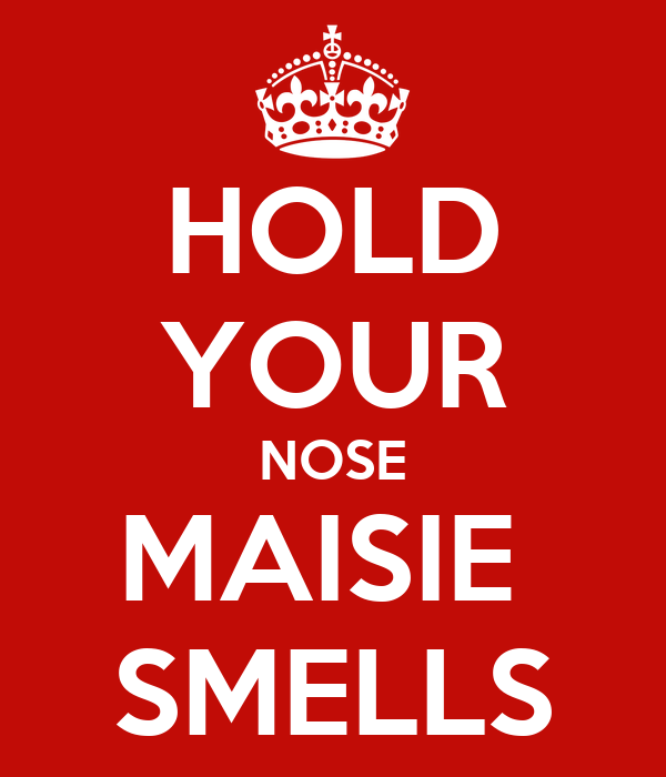 HOLD YOUR NOSE MAISIE  SMELLS