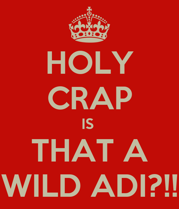 HOLY CRAP IS  THAT A WILD ADI?!!