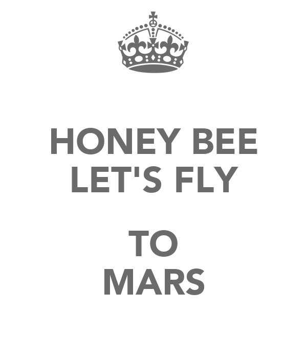 HONEY BEE LET'S FLY  TO MARS