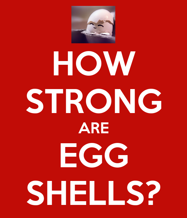 HOW STRONG ARE EGG SHELLS?