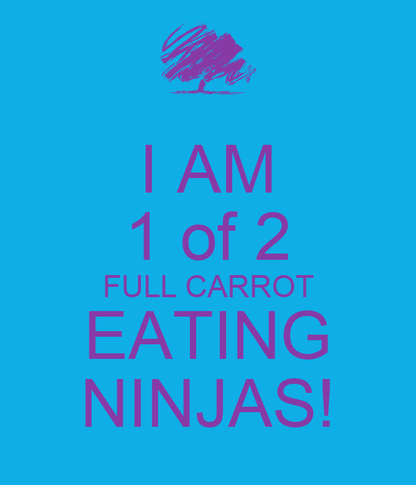 I AM 1 of 2 FULL CARROT EATING NINJAS!