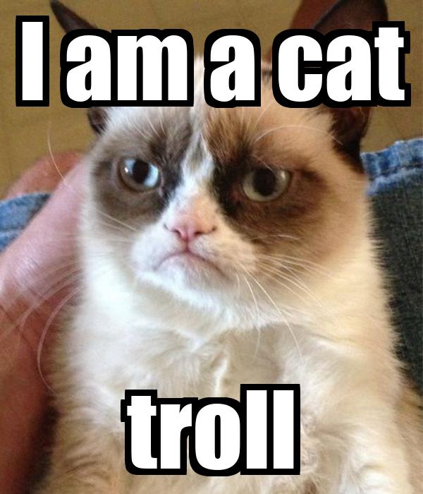I am a cat troll