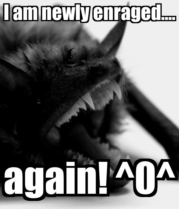 I am newly enraged.... again! ^0^