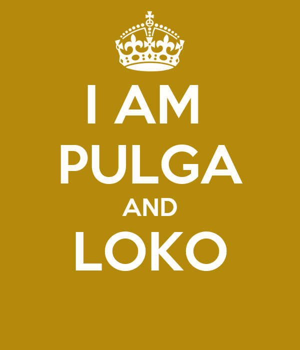 I AM  PULGA AND LOKO