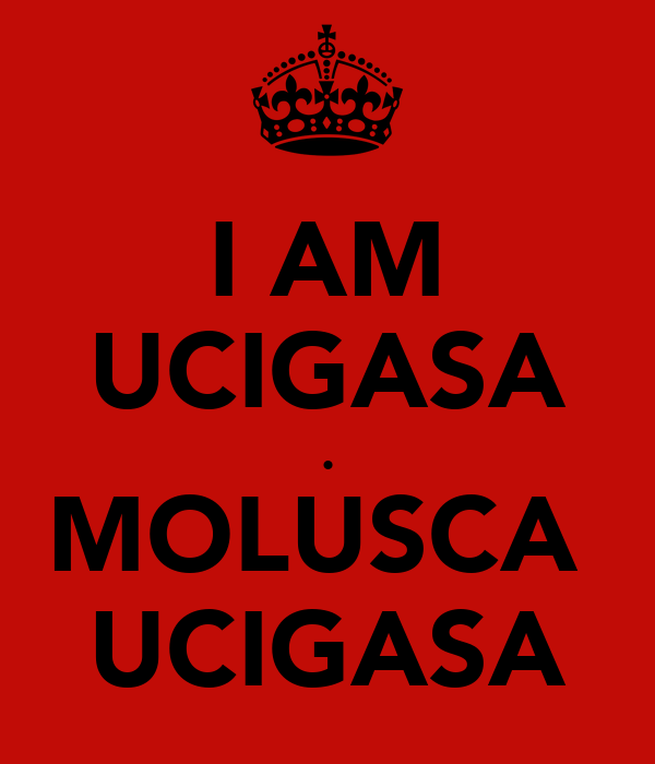 I AM UCIGASA . MOLUSCA  UCIGASA